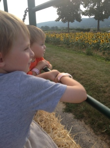The boys were captivated by all the sights around the farm!