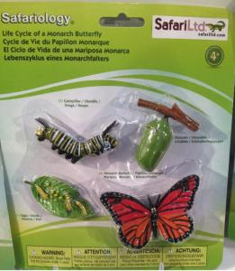 Safariology Kit