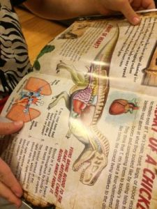 My son loved learning more details about T. Rex by reading the included book!