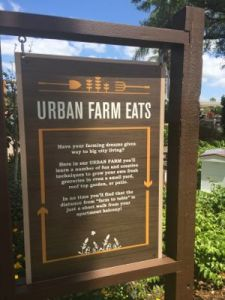 Urban Farm Eats